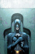 Batman and Robin-7 Cover-1 Teaser