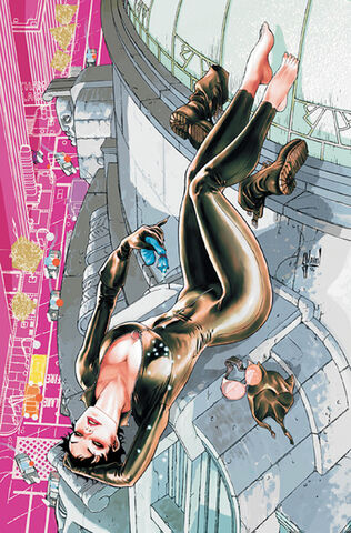 File:Catwoman Vol 4-1 Cover-1 Teaser.jpg