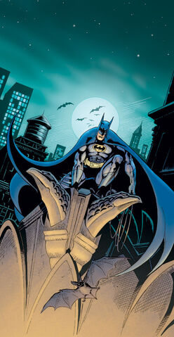 File:Batman-dc-comics-20080714012315983.jpg
