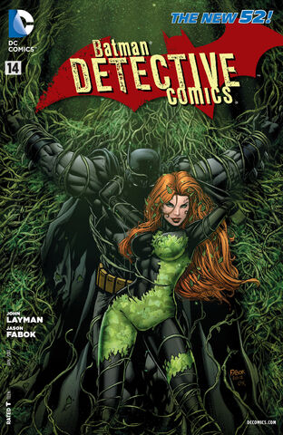 File:Detective Comics Vol 2-14 Cover-1.jpg