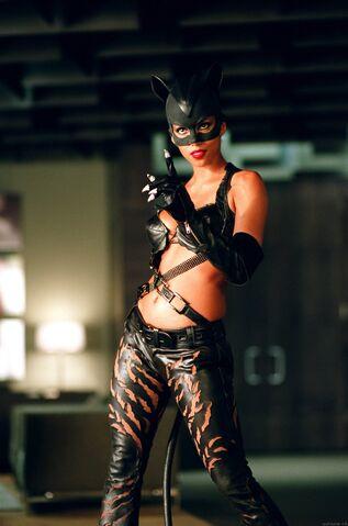 File:CatwomanHB.jpg