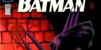 Batman Issue 533