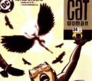 Catwoman (Volume 3) Issue 24