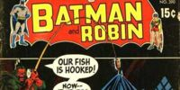 Robin The Teen Wonder