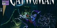 Catwoman (Volume 2) Issue 17