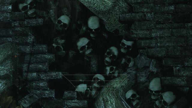 File:ArkhamSkulls.jpg