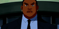 Amanda Waller (Young Justice)/Gallery