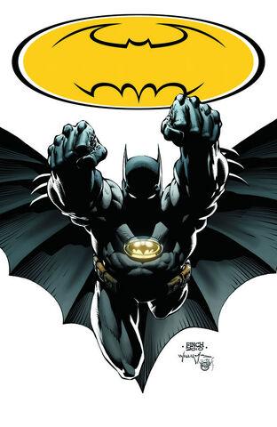 File:Batman Bruce Wayne-10.jpg
