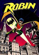 Robin Tim Drake 0011