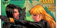 Birds of Prey Issue 63