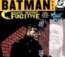 Batman Issue 603