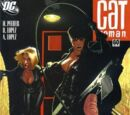 Catwoman (Volume 3) Issue 60