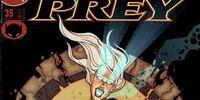 Birds of Prey Issue 35