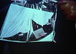 Evidence bag