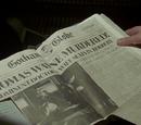 Wayne Murders case file