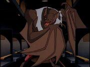 TS 41 - She-Bat