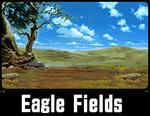 Eagle Fields