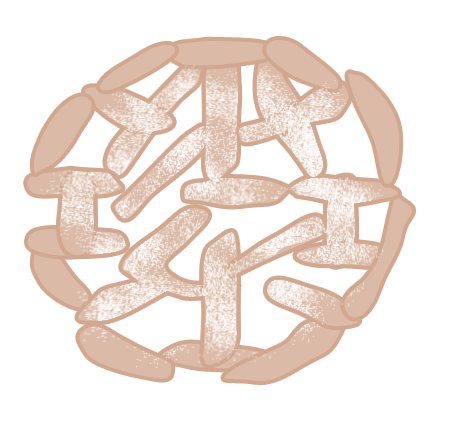 File:Funnel Cake Body.png