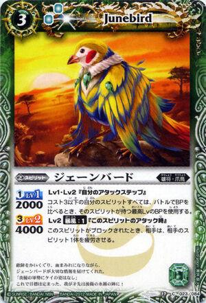 Junebird2