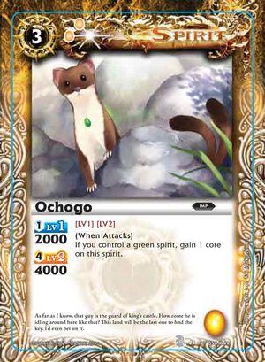 Ochogo2