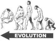BAALO13 37 Venusian evolution