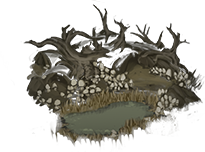 Файл:Mushroom Grove.png