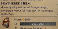Golden Feathered Helm