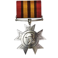 File:Legion of Glory Medal.png