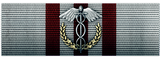 File:Medical Efficiency Ribbon.png