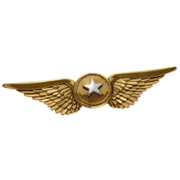 File:Ultimate Commander.png
