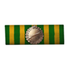 Scout Ribbon of Valor