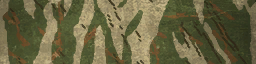 File:BF4 Tiger Autumn Paint.png