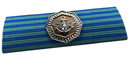 File:BF4 Carrier Assault Ribbon.png