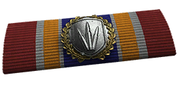 File:BF4 Assault Rifle Ribbon.png