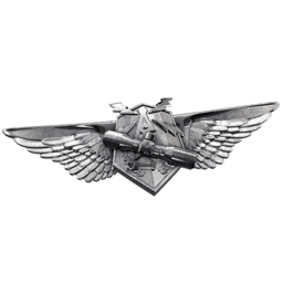 File:Recon Veteran.png