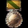 Medic Order of Valor Medal