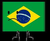 BFDI Brazil