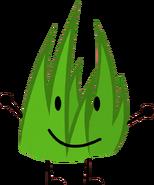 Grassy 2