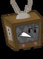 Television Pose