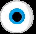 Eye body