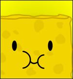 SpongyRegularBox