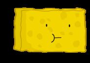 Spongyderp