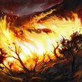 Artwork Wildfire.jpg