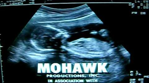 Job Site Productions Mohawk Productions Warner Bros