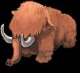 S mammoth medium front