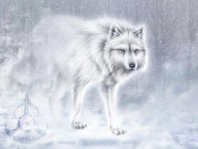 File:223px-Snow form.jpg