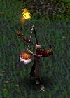 Raider-battlerealms