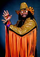 Randy Savage wwe