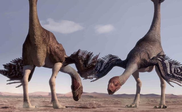 File:Gigantoraptor 1.jpg