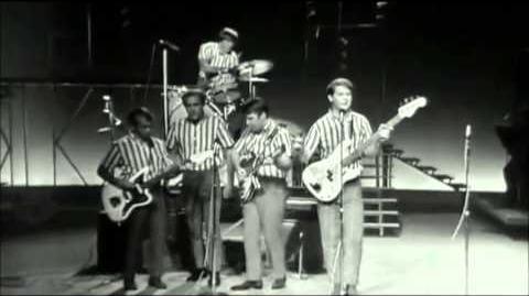 The Beach Boys Live @ the T.A.M.I